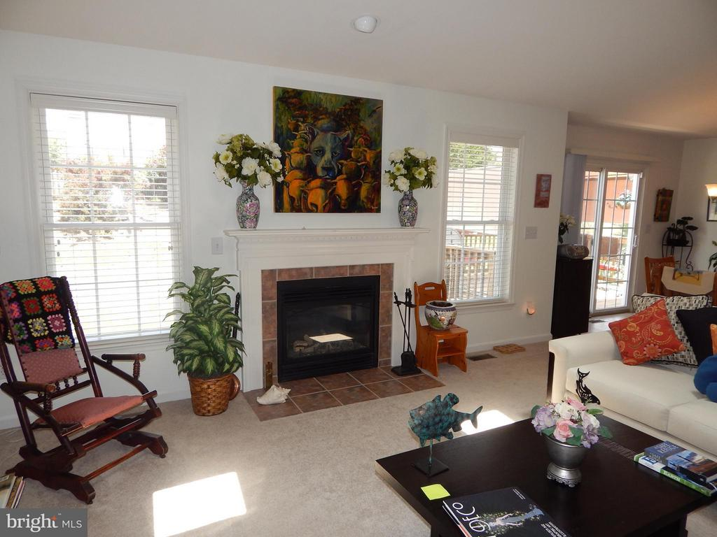 Cozy Gas Fireplace in Family rm - 6017 WATERMAN DR, FREDERICKSBURG