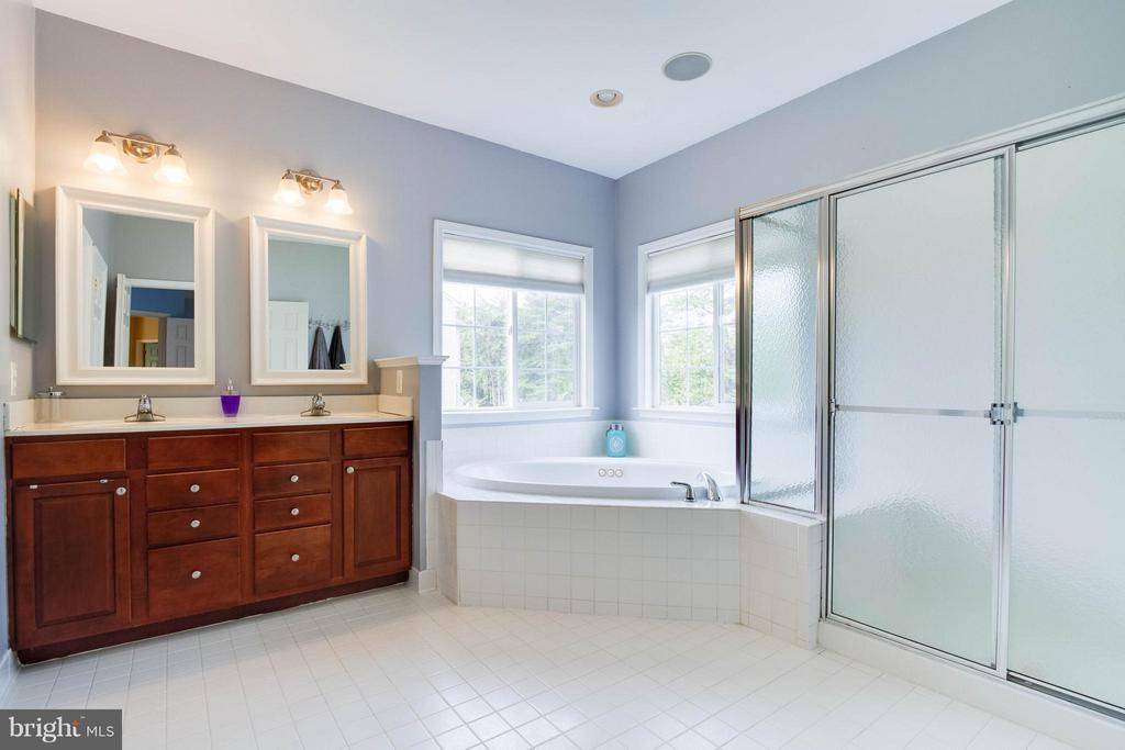 Bath (Master) - 24971 BELCOURT CASTLE DR, CHANTILLY
