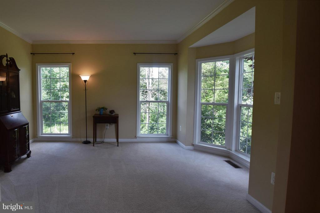 Living Room - 24971 BELCOURT CASTLE DR, CHANTILLY