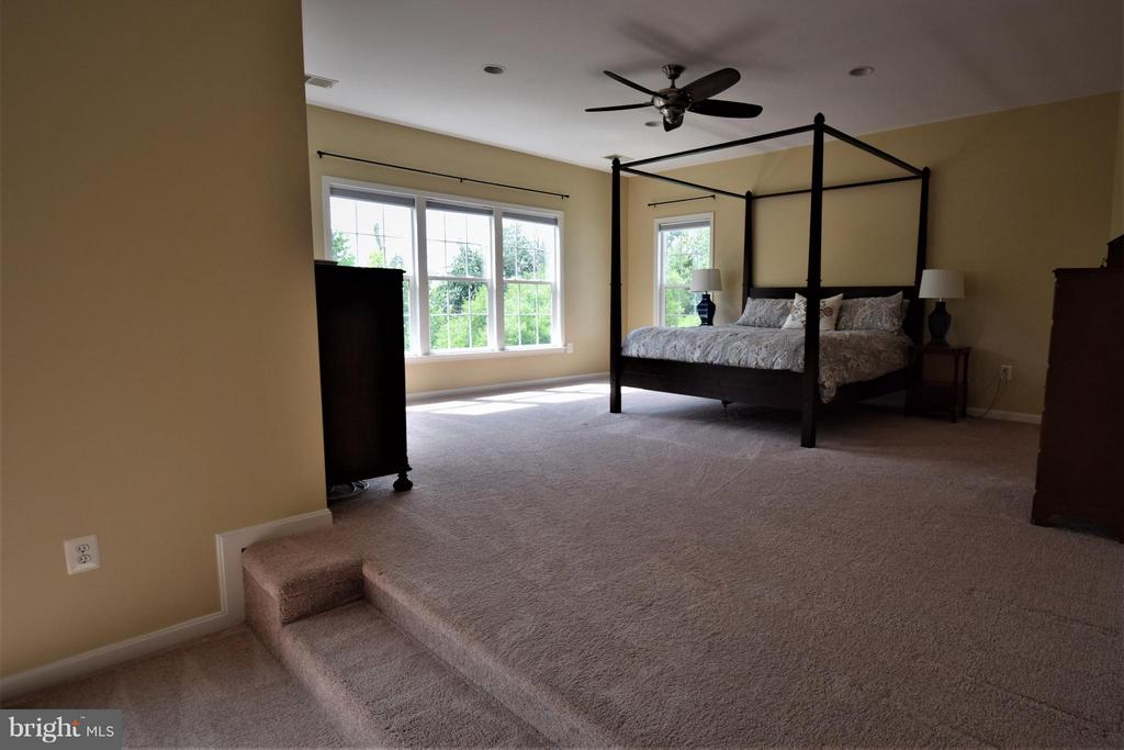 Bedroom (Master) - 24971 BELCOURT CASTLE DR, CHANTILLY