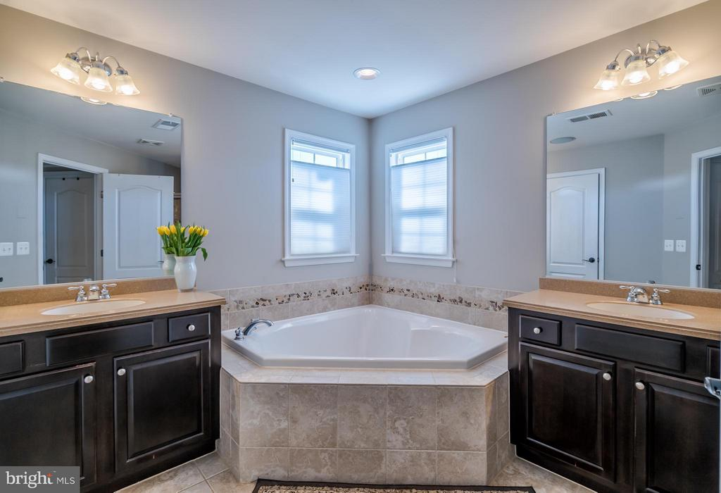 Master Bathroom with Soaking Tub - 42960 THORNBLADE CIR, BROADLANDS