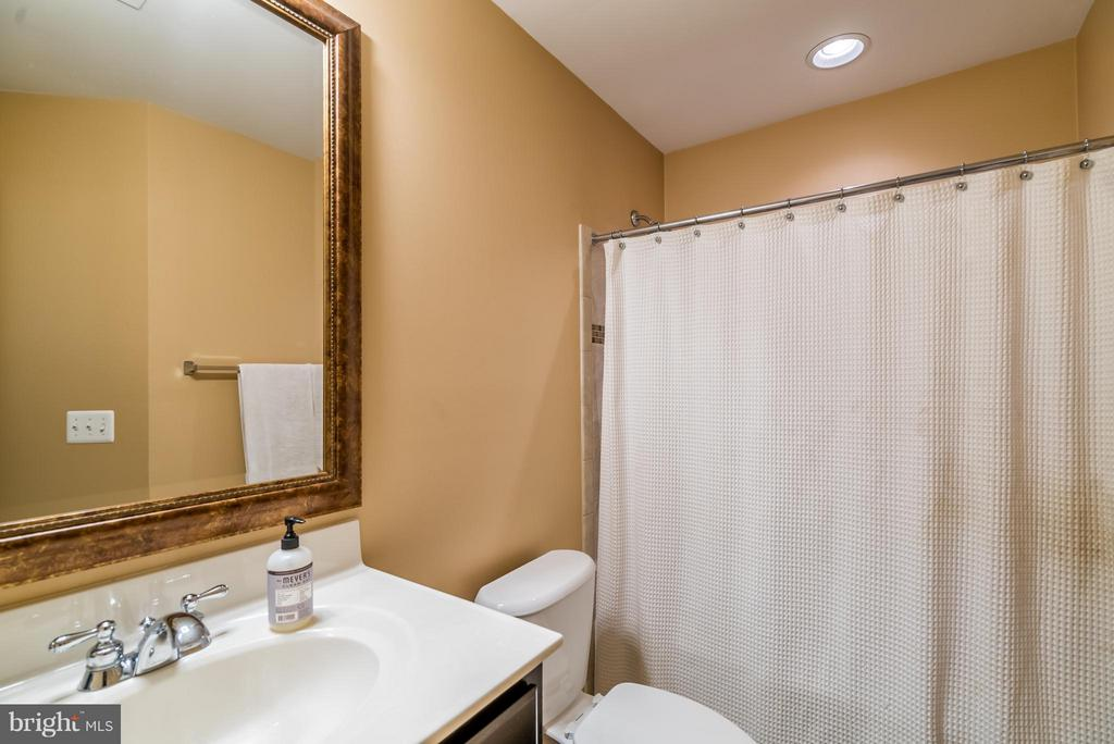 Bath - 42960 THORNBLADE CIR, BROADLANDS