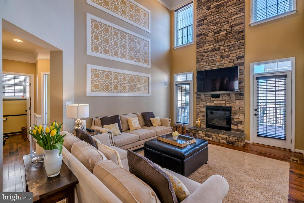Spacious Family Room - 42960 THORNBLADE CIR, BROADLANDS
