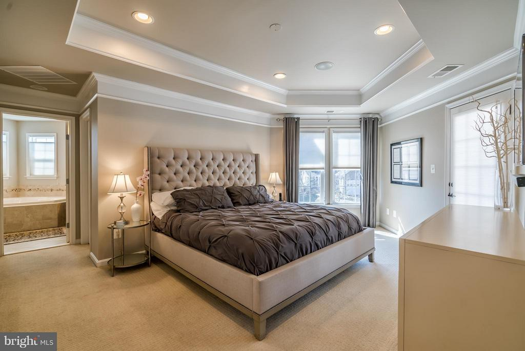Master Bedroom with Tray Ceiling - 42960 THORNBLADE CIR, BROADLANDS