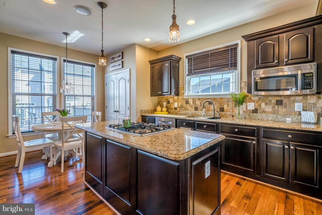 Gourmet Kitchen with Breakfast Area - 42960 THORNBLADE CIR, BROADLANDS