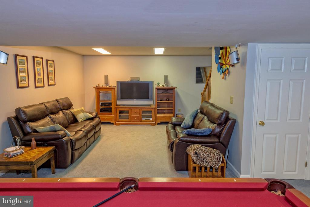 Awesome lower level space for games and movies. - 43337 WAYSIDE CIR, ASHBURN