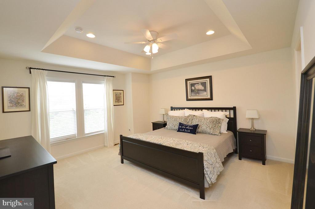 Master Bedroom with Tray Ceiling - 42416 BENFOLD SQ, ASHBURN