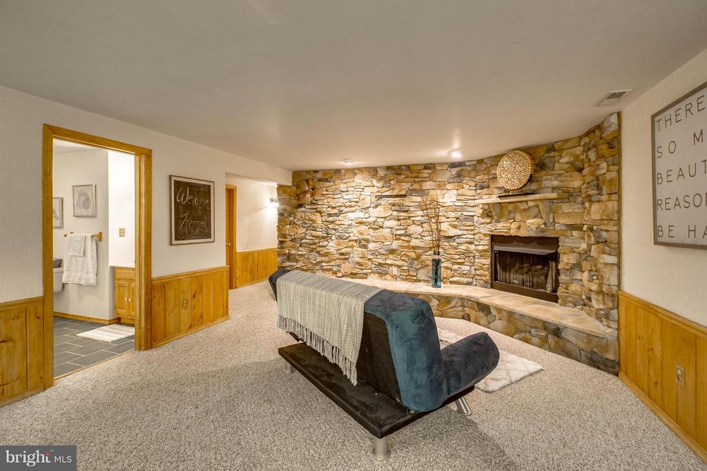 Basement - 6516 FORDICE DR, MOUNT AIRY
