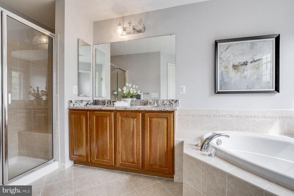 Bath (Master) - 22060 CHELSY PAIGE SQ, ASHBURN