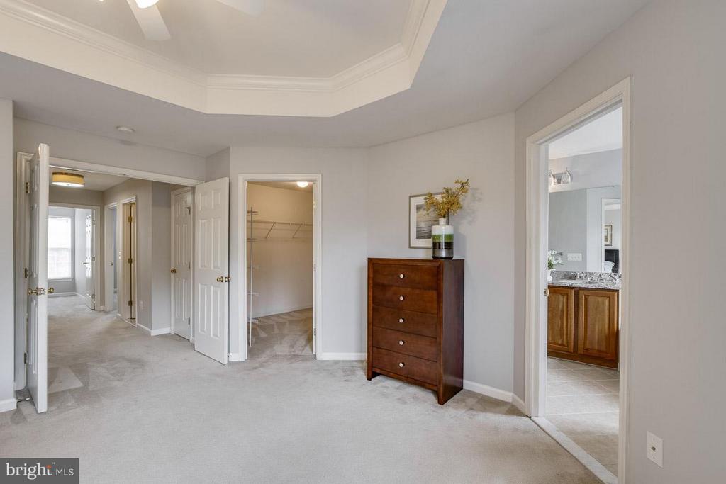 Bedroom (Master) - 22060 CHELSY PAIGE SQ, ASHBURN