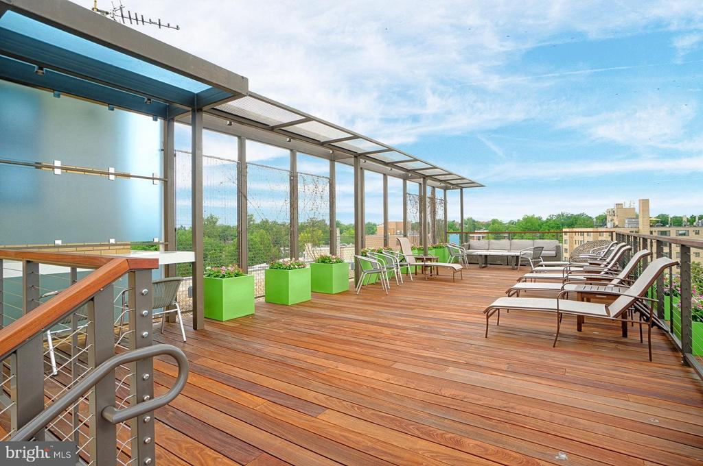 Gorgeous Rooftop Deck - 5410 CONNECTICUT AVE NW #916, WASHINGTON