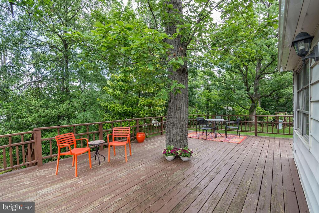 Expansive deck surrounded by nature - 3403 CHEVERLY AVE, CHEVERLY