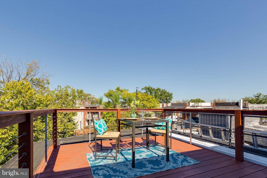 HUGE deck off living area - 223 FLORIDA AVE NW #4, WASHINGTON