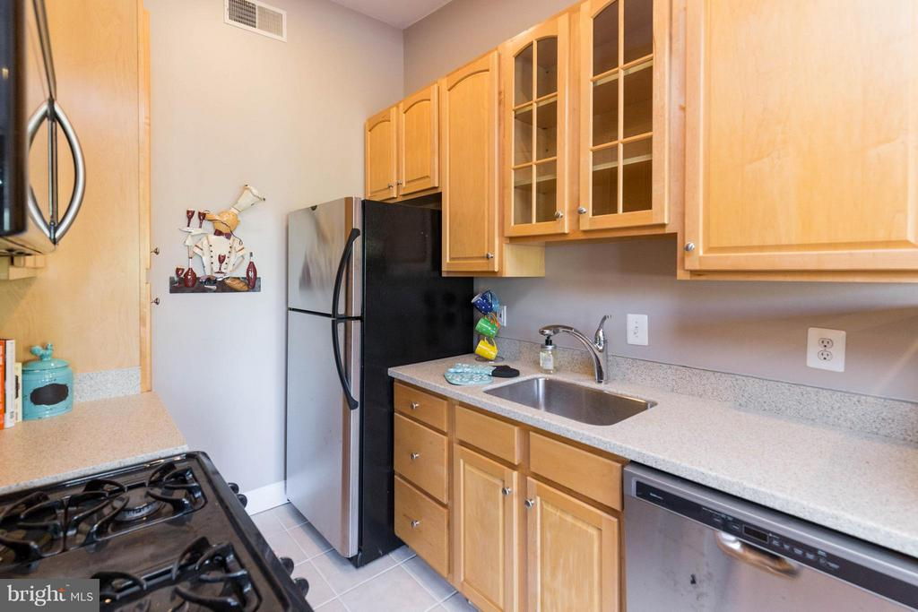 Stone counters and stainless appliances - 223 FLORIDA AVE NW #4, WASHINGTON