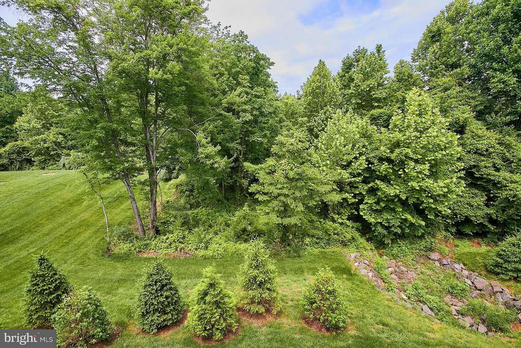 Premium lot - view from deck! - 9052 ISABEL LN, MANASSAS PARK