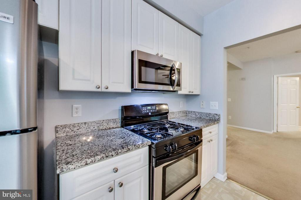 updated appliances and granite counters - 5940 FOUNDERS HILL DR #103, ALEXANDRIA