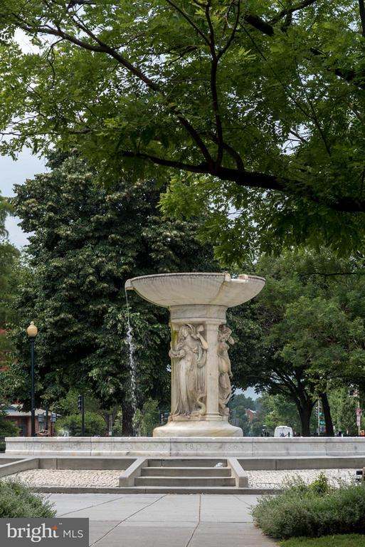 Dupont Circle Neighborhood - 1718 P ST NW #L5, WASHINGTON