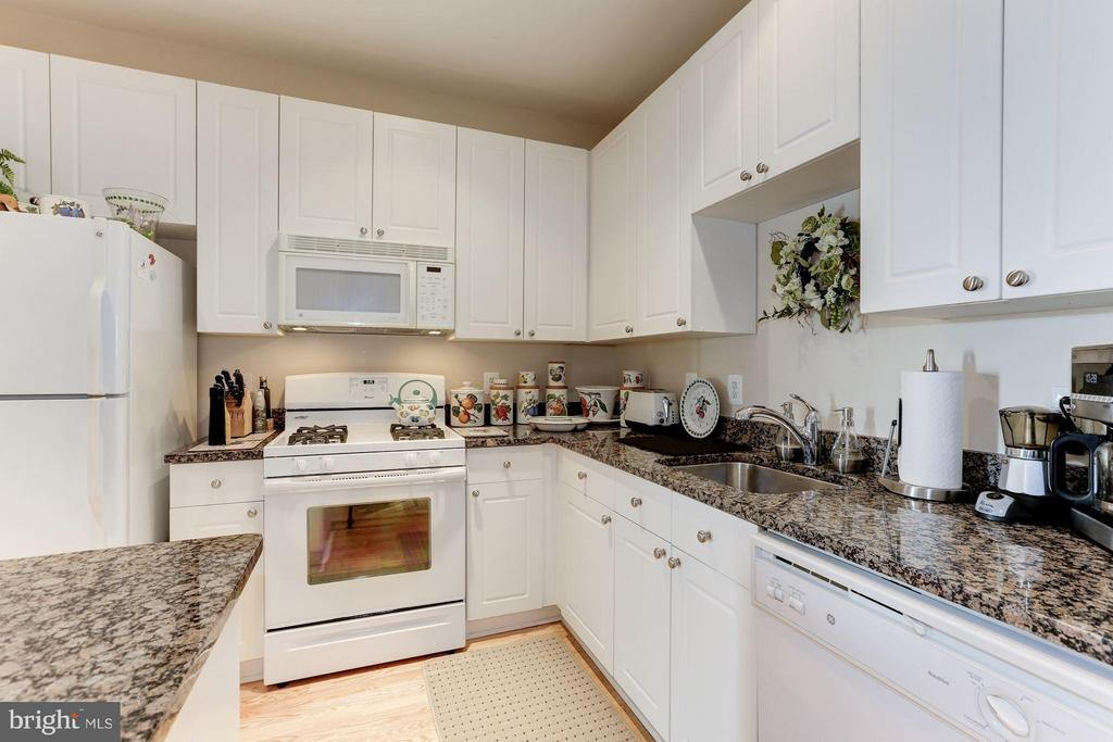 Gas cooking + granite countertops - 9490 VIRGINIA CENTER BLVD #343, VIENNA