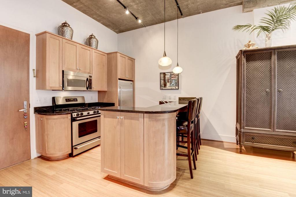 SPACIOUS KITCHEN WITH BREAKFAST BAR! - 2328 CHAMPLAIN ST NW #320, WASHINGTON