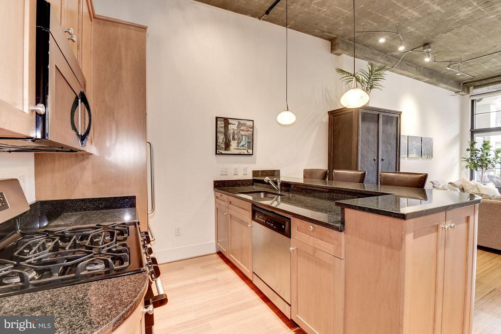 KITCHEN WITH ABUNDANCE OF CABINETRY SPACE! - 2328 CHAMPLAIN ST NW #320, WASHINGTON