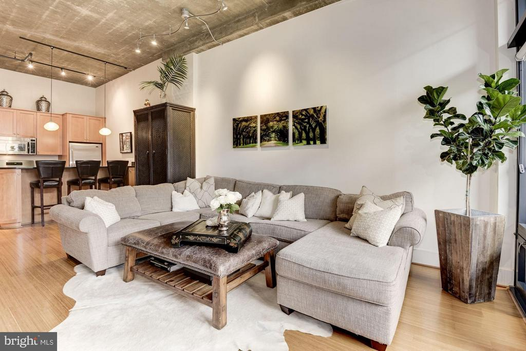 LIVING ROOM - RIGHT OUT OF A MAGAZINE! - 2328 CHAMPLAIN ST NW #320, WASHINGTON