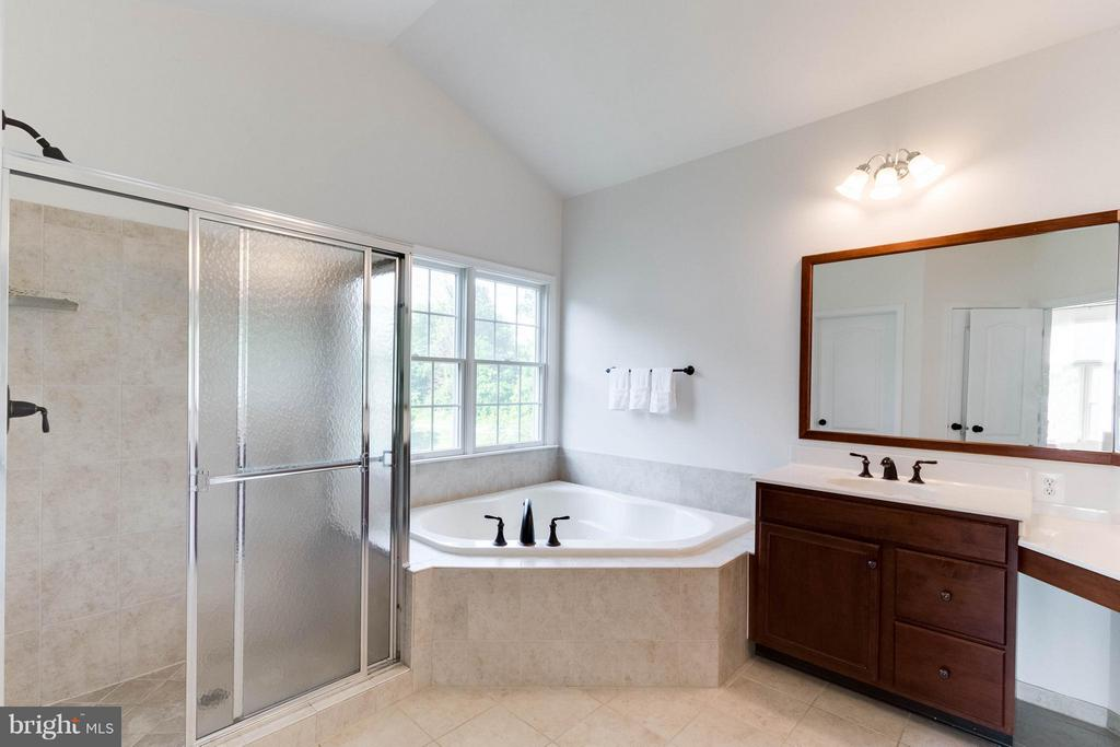 Master bath w/ dual vanities - 25287 JUSTICE DR, CHANTILLY