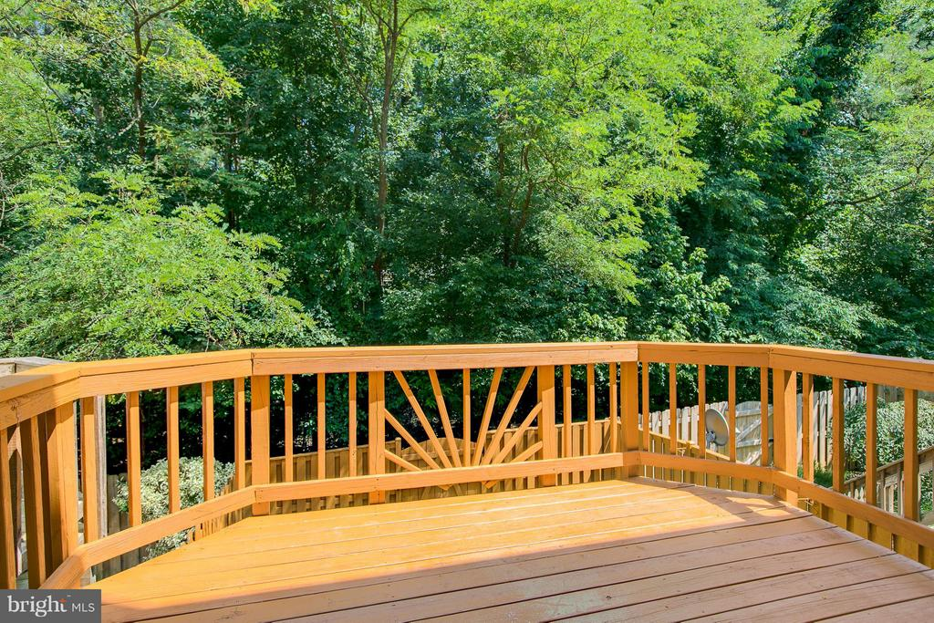 Large Deck - 508 WATERS COVE CT, STAFFORD