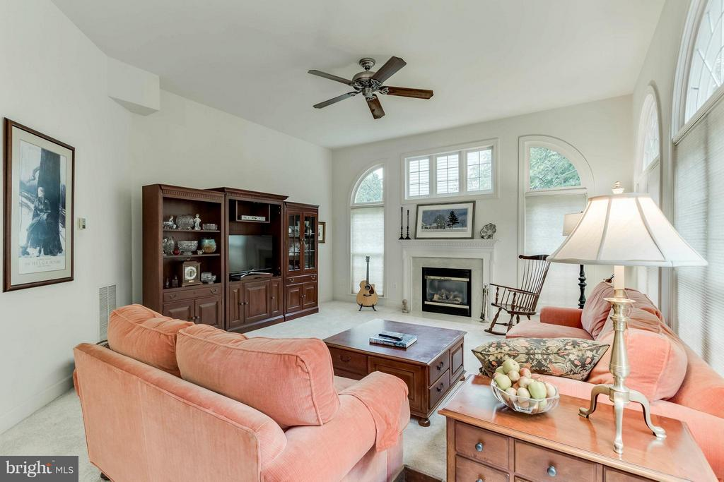 Family Room - 43900 LOGANWOOD CT, ASHBURN