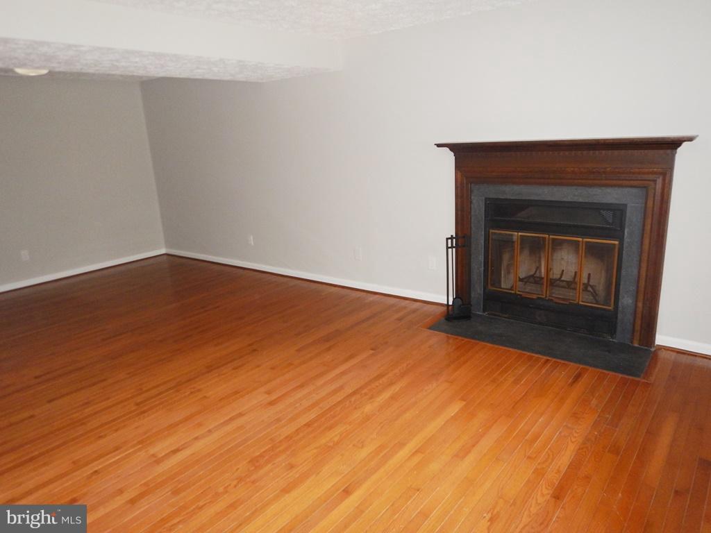 Recreation Room with  Fiireplace - 5700 TENDER CT, SPRINGFIELD