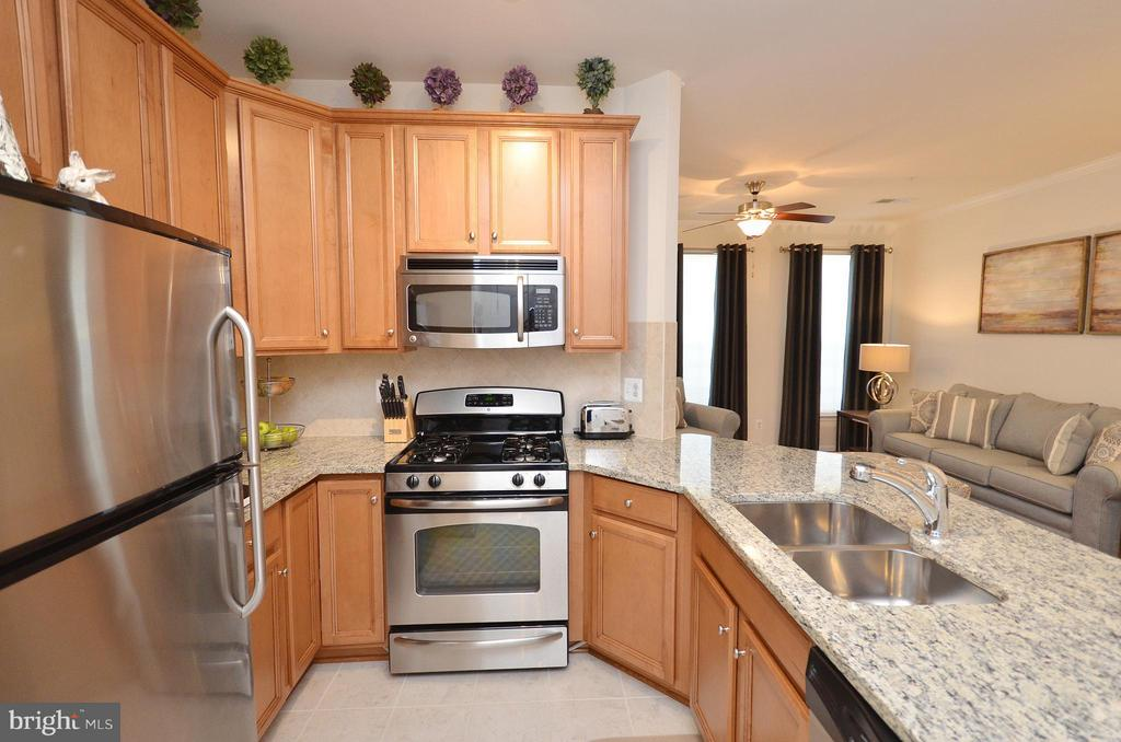Kitchen with Stainless Steel Appliances - 19442 DIAMOND LAKE DR #19442, LEESBURG