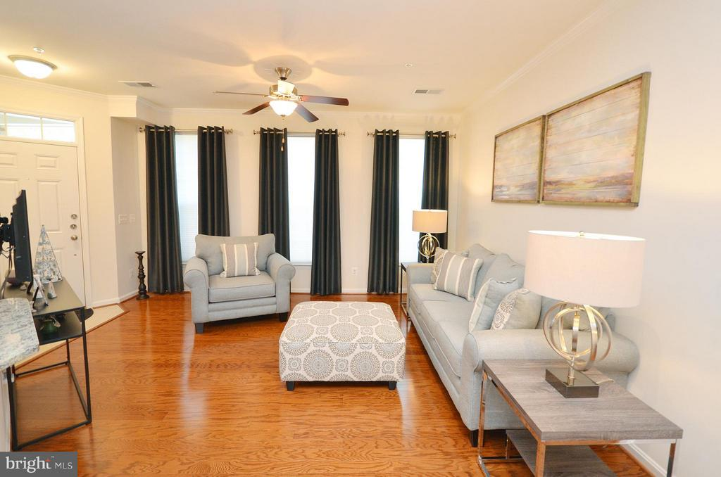 Living Room with Ceiling Fan - 19442 DIAMOND LAKE DR #19442, LEESBURG
