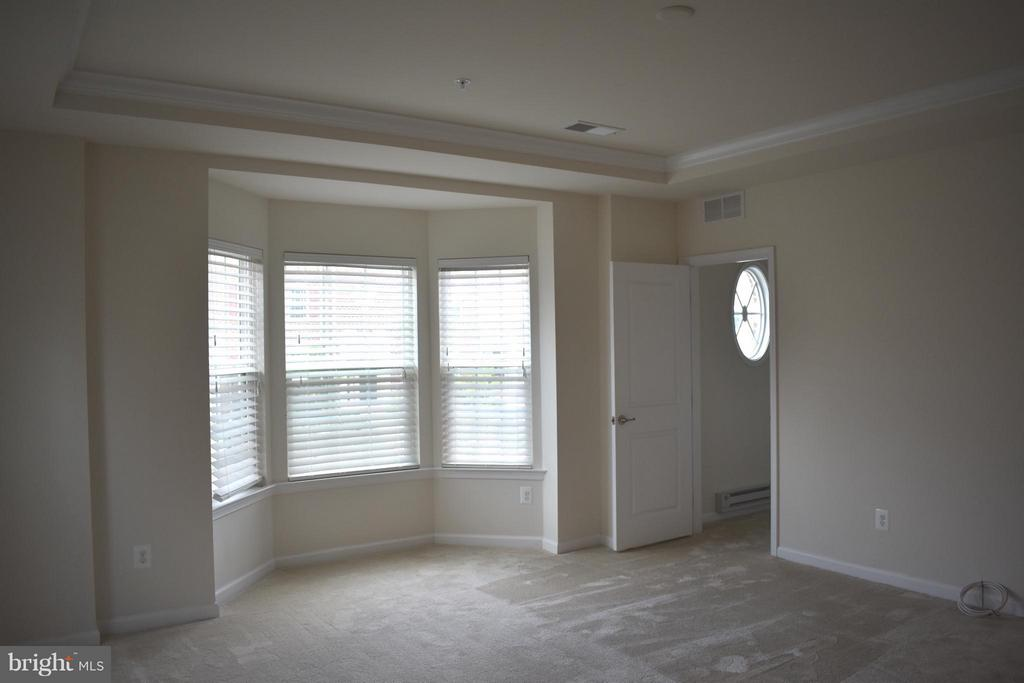 Master Bedroom w/ 2 Walk-in Closets - 21641 ROMANS DR, ASHBURN