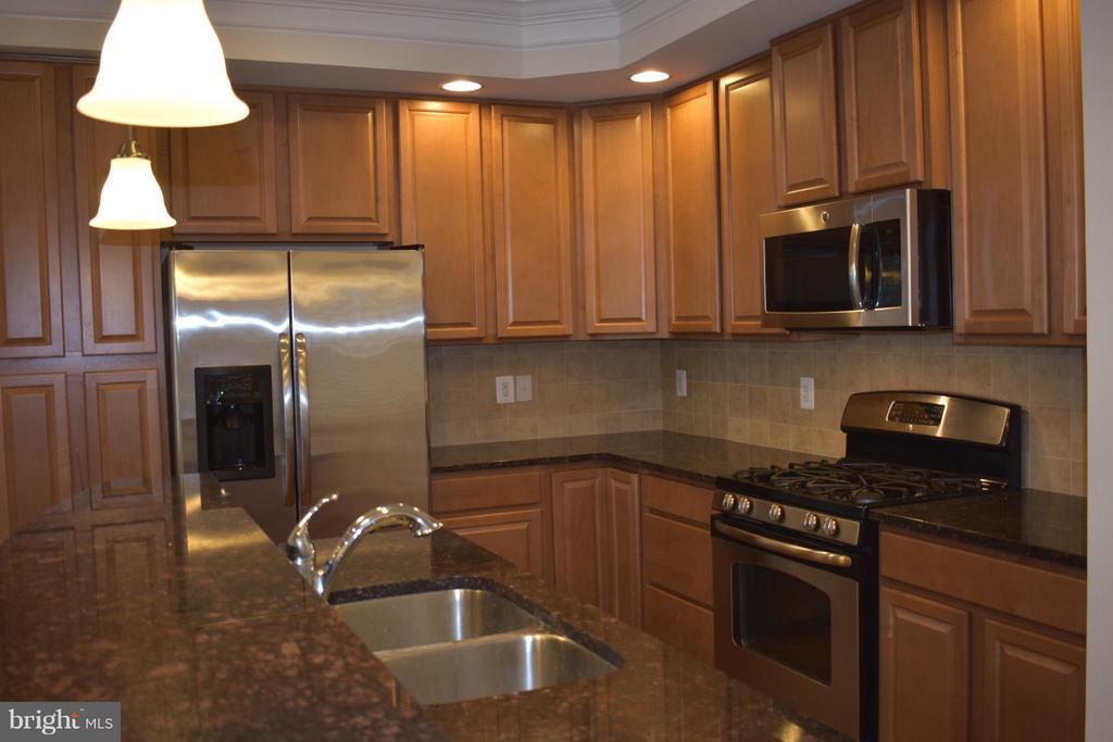 Gourmet Kitchen w/ Upgraded Granite - 21641 ROMANS DR, ASHBURN