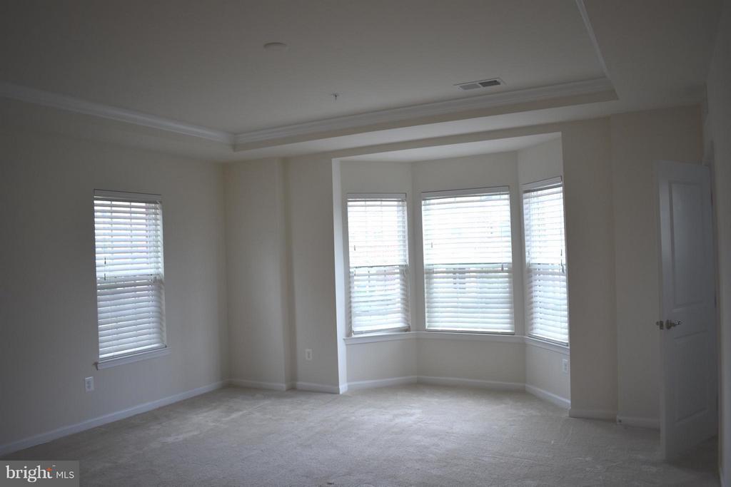 Well Lit Master w/ Tray Ceilings & Bay Window - 21641 ROMANS DR, ASHBURN