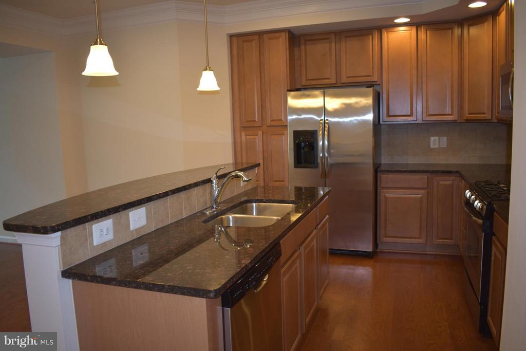 Upgraded Cabinets & Stainless Steal Appliances - 21641 ROMANS DR, ASHBURN
