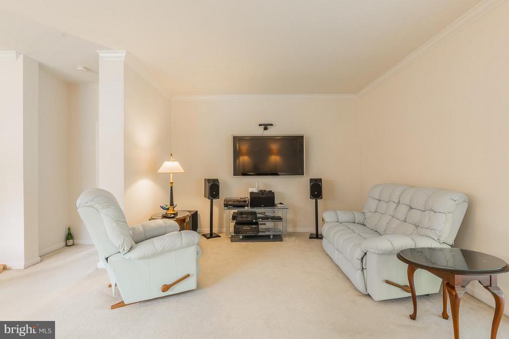 Living Room - 3700 GREY GHOST CT, DUMFRIES