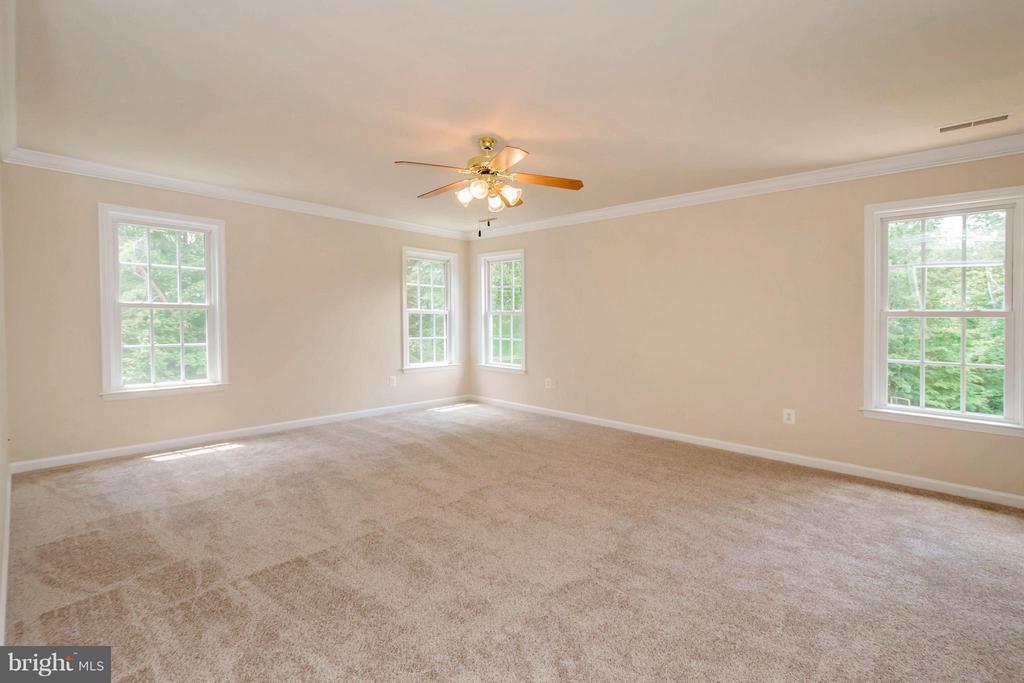 Bedroom (Master) - 13200 CHANDLER CT, FREDERICKSBURG