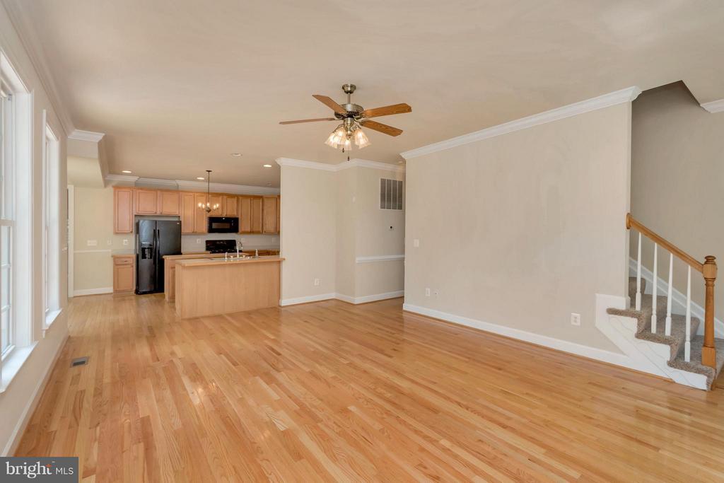 Family Room - 13200 CHANDLER CT, FREDERICKSBURG