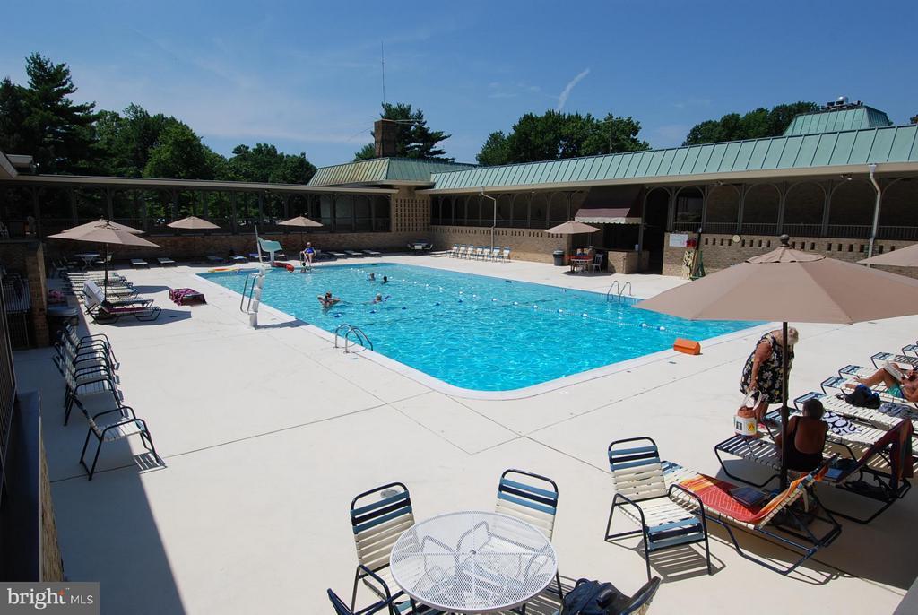 Outdoor Pool - 15100 GLADE DR #11-3E, SILVER SPRING