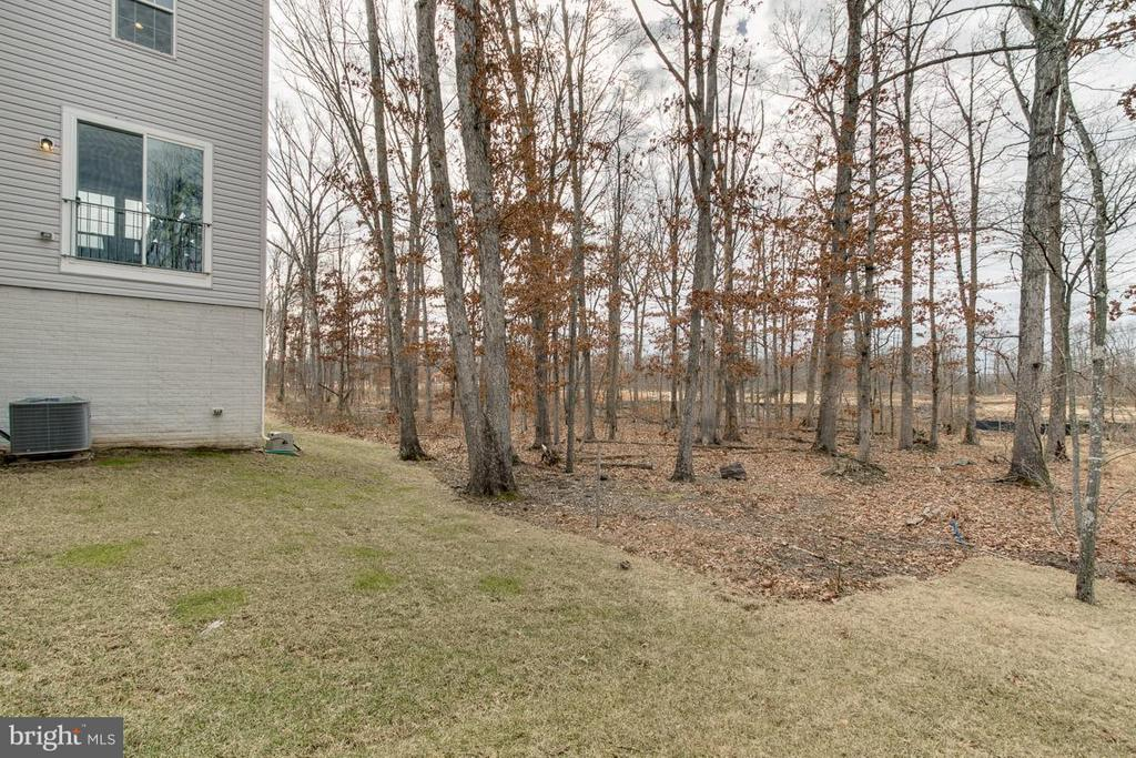 Premium lot backs to trees - 10339 SPRING IRIS DR, BRISTOW