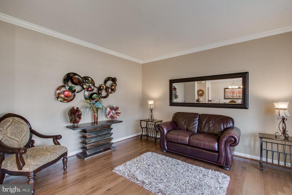 Living Room - 10339 SPRING IRIS DR, BRISTOW
