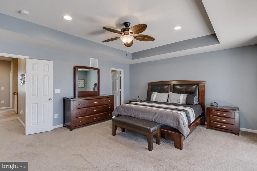 Huge custom master suite - 10339 SPRING IRIS DR, BRISTOW