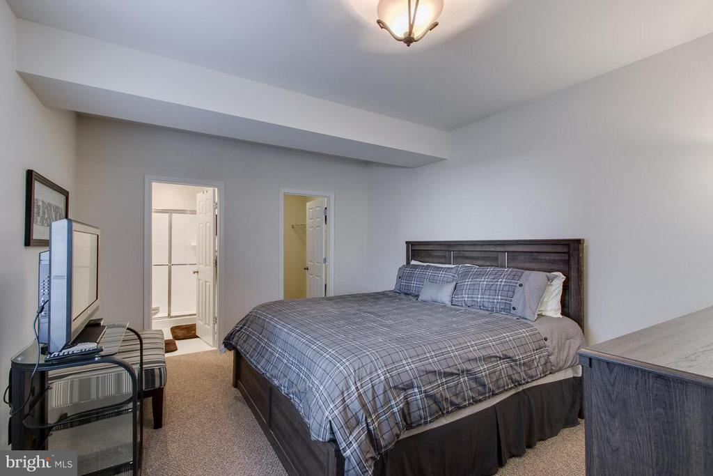 5th bedroom in basement w/ensuite - 10339 SPRING IRIS DR, BRISTOW