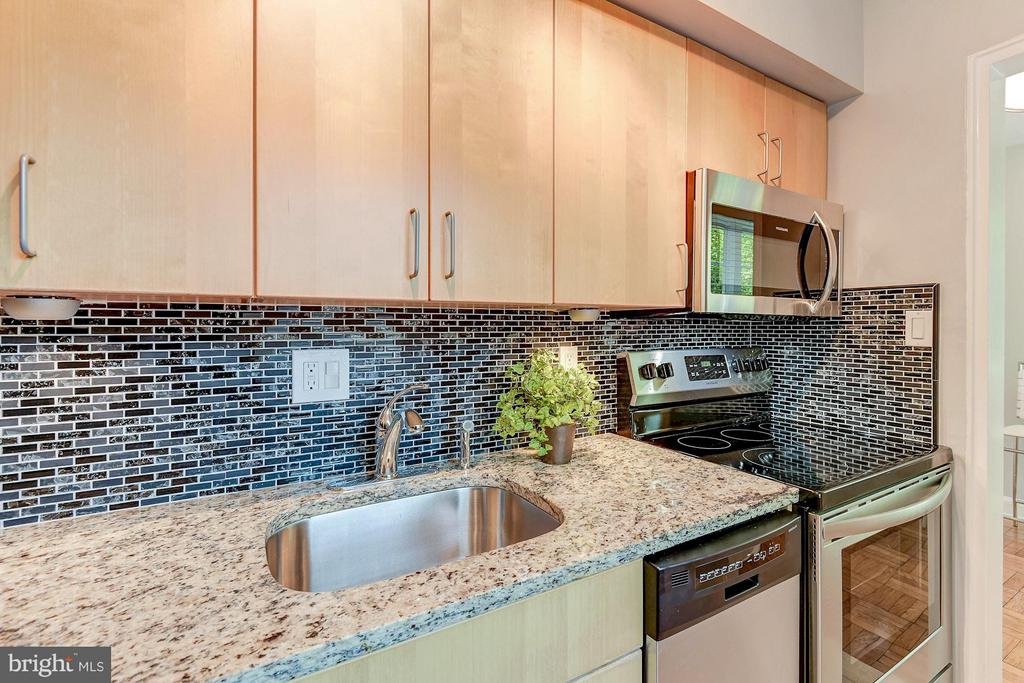 Custom glass backsplash + granite counters - 1336 ODE ST #8, ARLINGTON