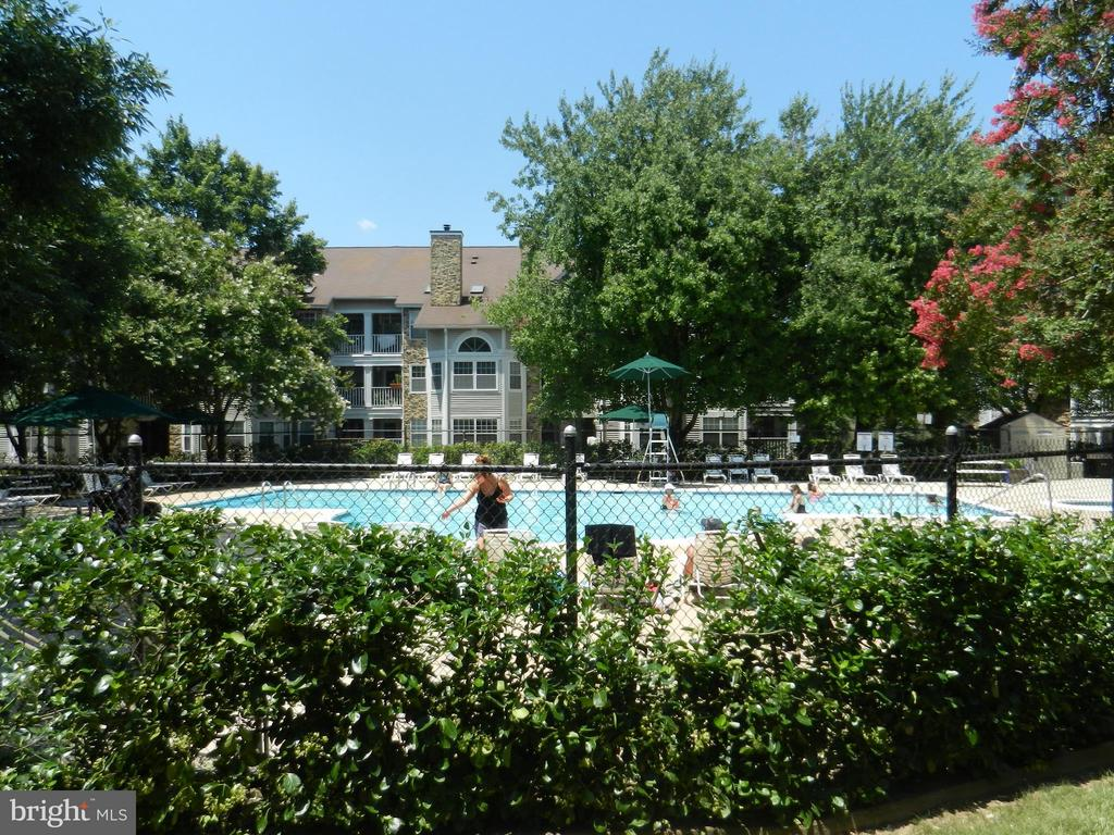 Community Pool is steps away - 5612 WILLOUGHBY NEWTON DR #16, CENTREVILLE
