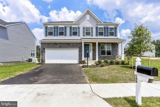 100 COTTON BLOSSOM CT
