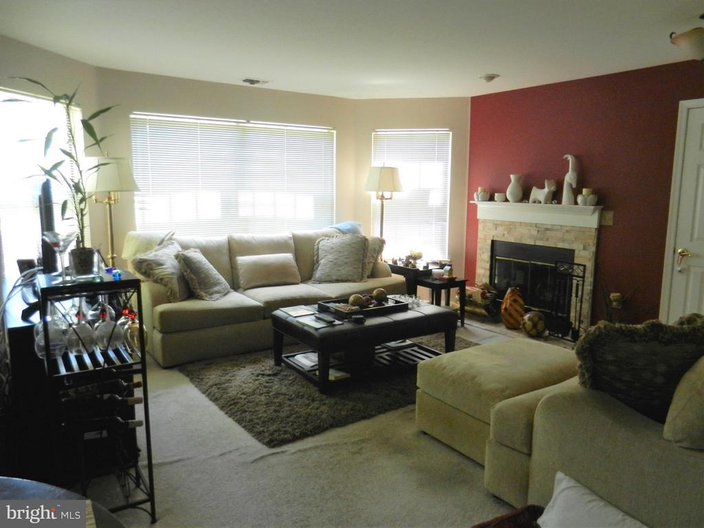 Sunny Lovely Living Room - 5612 WILLOUGHBY NEWTON DR #16, CENTREVILLE