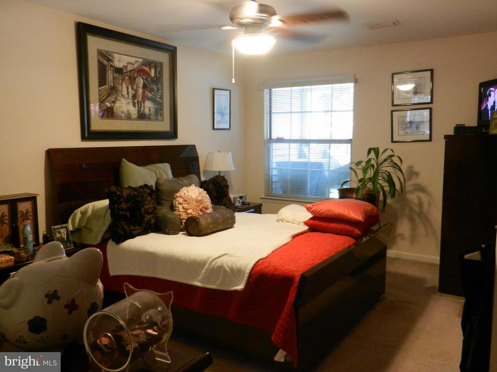 Great Master with walk in closet and private  bath - 5612 WILLOUGHBY NEWTON DR #16, CENTREVILLE