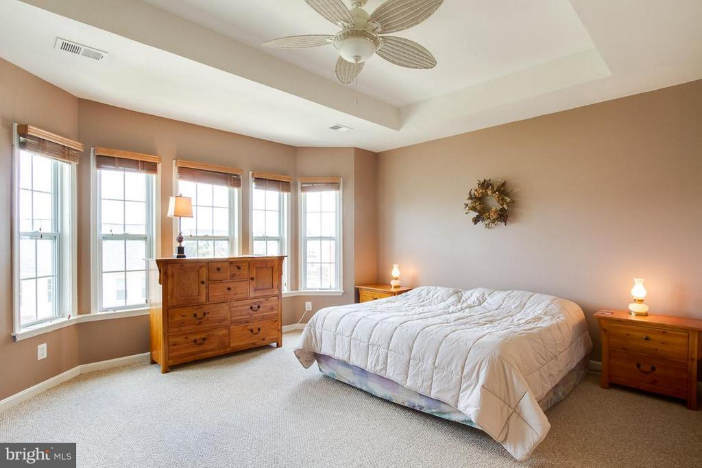 Bedroom (Master) - 19323 DIAMOND LAKE DR, LEESBURG