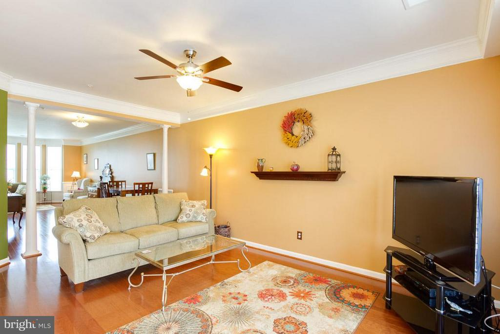 Family Room - 19323 DIAMOND LAKE DR, LEESBURG